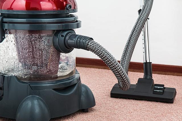 Waschsauger auf Teppich